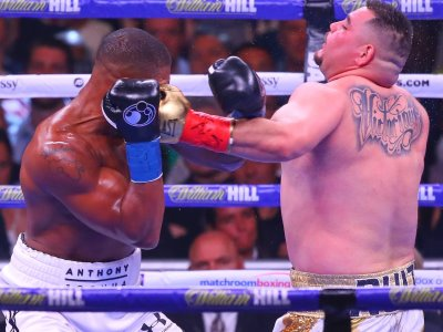 Anthony Joshua & Andy Ruiz (Boxen)