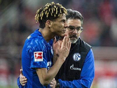 Bayern Schalke Tipp