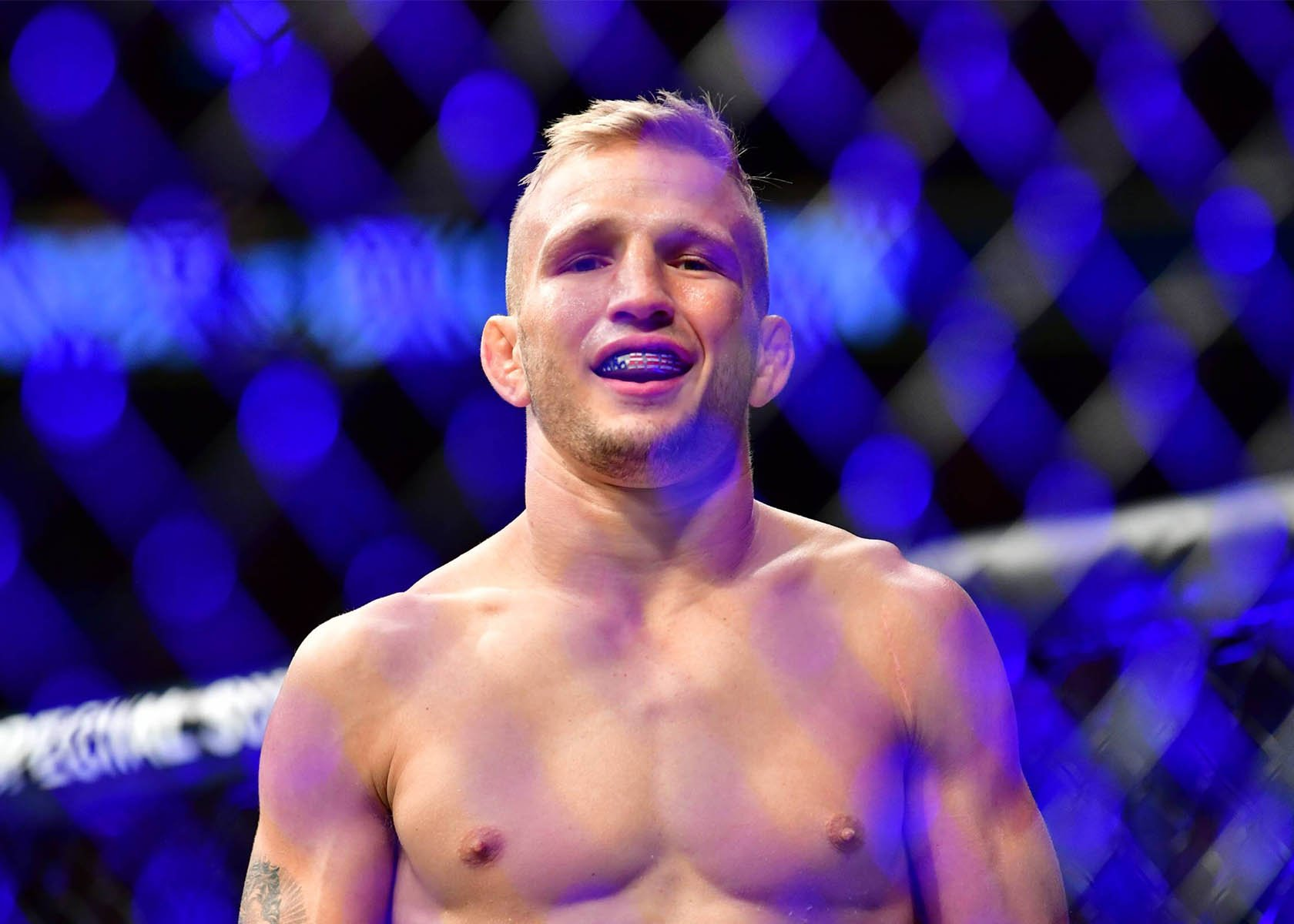 UFC Fight Night TJ Dillashaw